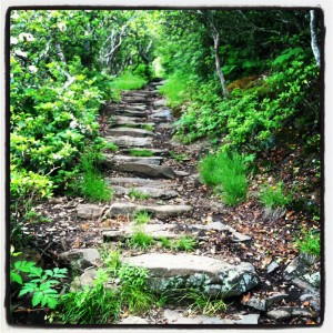 Pisgah National Forest Stairs